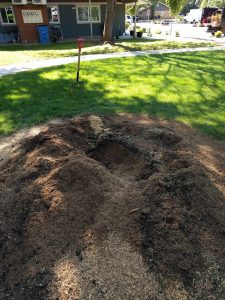 After stump removal and before clean up done by New Day Arborist & Tree Service in Vancouver, WA